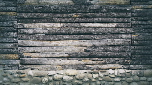 tree log board