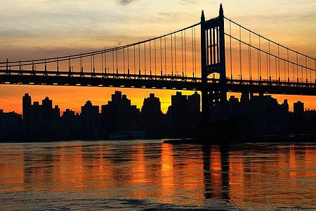 silhouette photo of bridge beside building