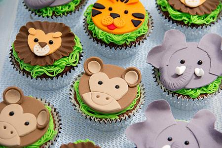 assorted cupcake lot