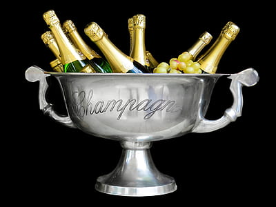 stainless steel champagne bowl with wine bottles