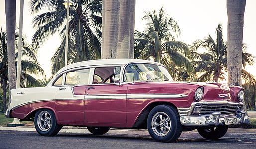 classic white and maroon sedan near palm trees