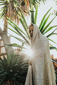 man wearing beige robe near palm tree