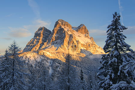 Snow Covered Mountain With Pine Trees