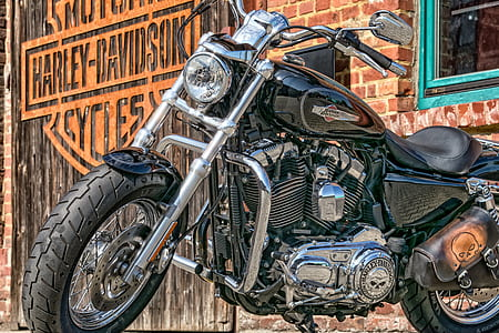 close-up photography of Harley-Davidson Motorcycles cruiser motorcycle
