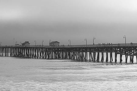 greyscale photography of boardwalk