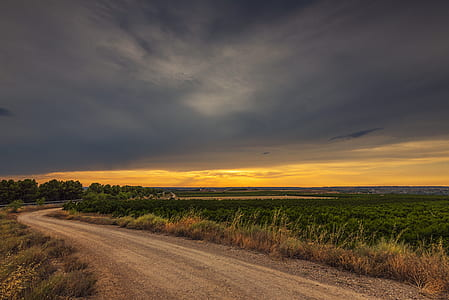 landscape photography of grass field with road