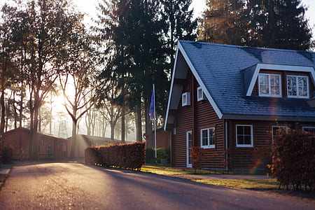 close up photography of brown and white house with attic near pine trees with sun ys