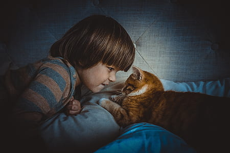 boy and cat lying on bed