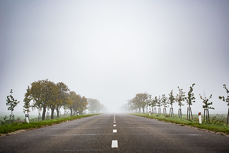 Foggy Road to Nowhere