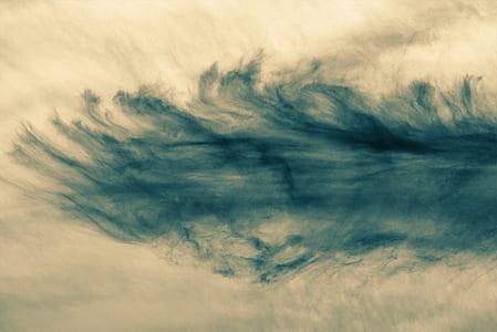 cloud, sun, sky, monochrome, moody sky