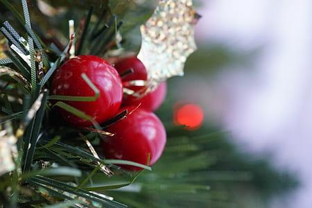 Three Round Red Fruits