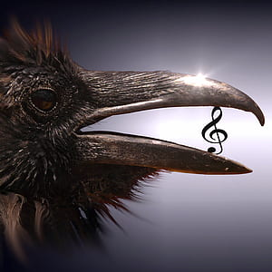 brown bird and g-clef note