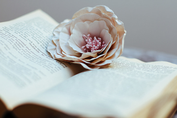 Open book and flower