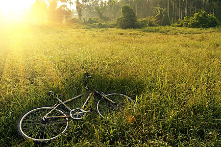 gray and black road bike on green grass field during daytime