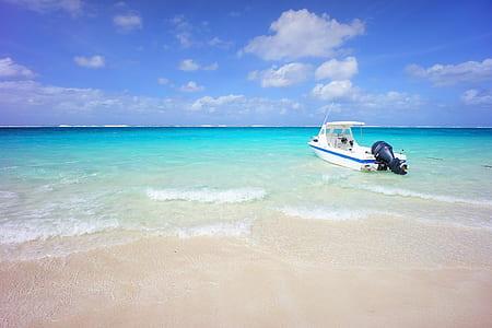 white motorized boat near seashore