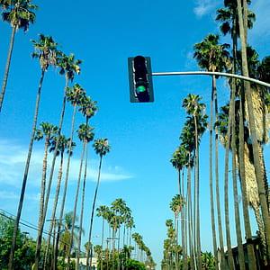 Traffic Light at Green