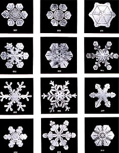 twelve assorted snow flakes collage