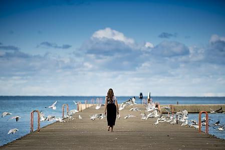 woman walking on dock overlooking beach with birds around under blue sky