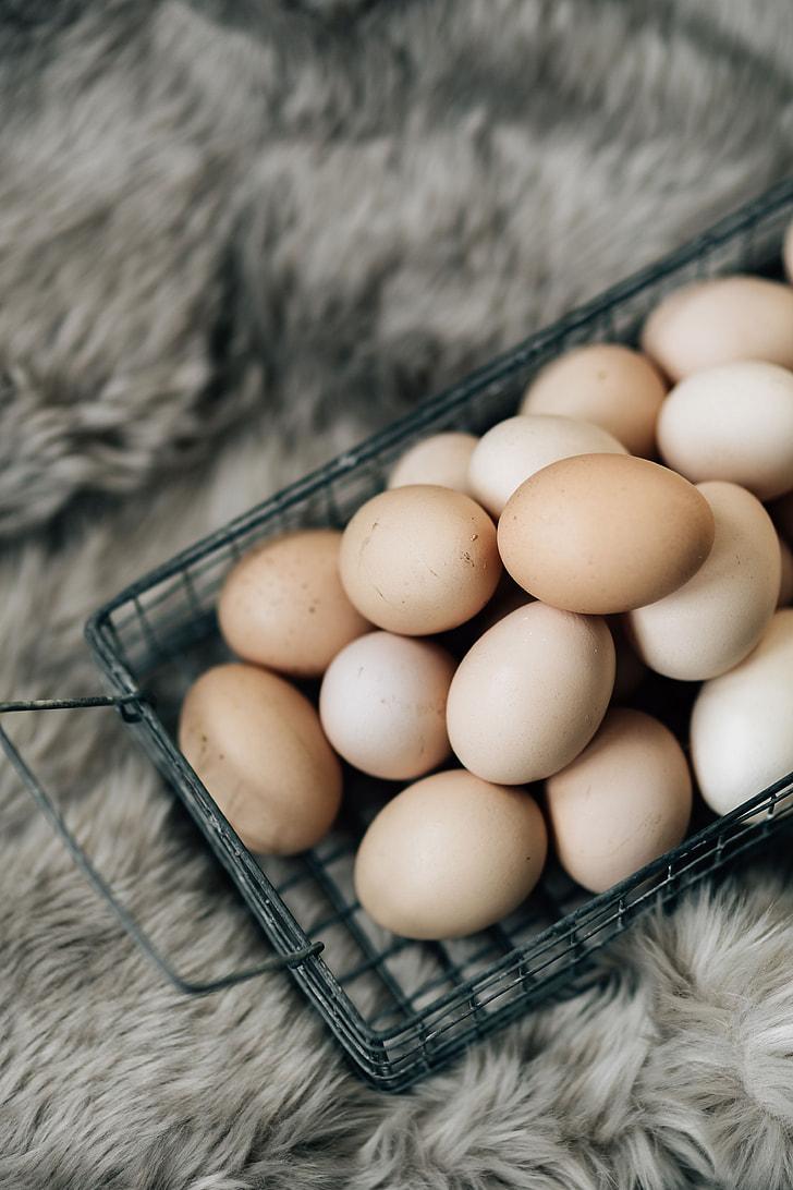 Royalty-Free photo: Wire mesh basket with fresh farm eggs | PickPik