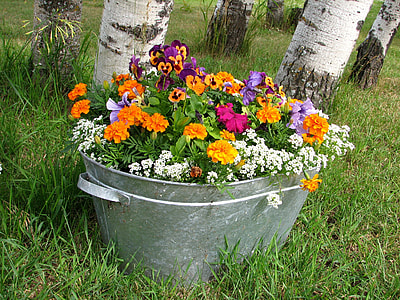 beverage tub filled with assorted-color flowers