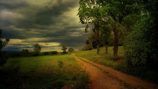 landscape photo of pathway with green grass under white clouds