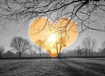 gray scale photo of sunset with heart shape