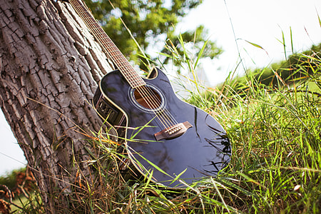 Guitar In Sunny Grass