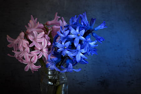 bouquet of pink and blue flowers on clear glass vase