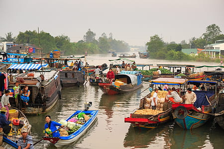 group of people inside boats during daytime