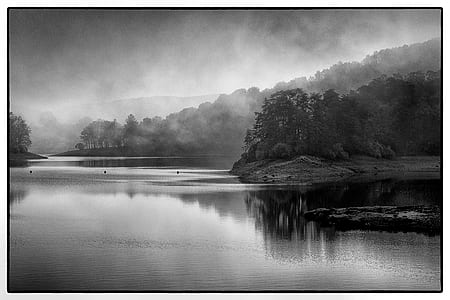 greyscale photo of lake and trees