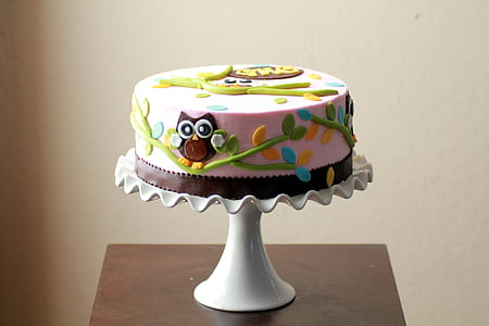 round pink and green icing cake on white cake dish