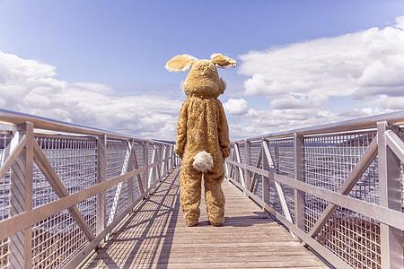 person in costume standing on bridge