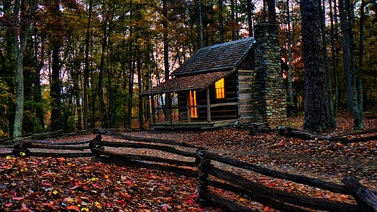 lighted brown house in the forest