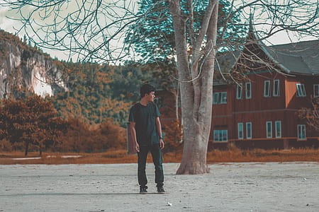Man in Blue Crew Neck Shirt Standing Behind Brown Tree