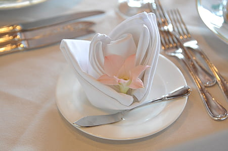 photo of table and napkin arrangement