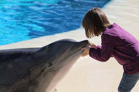 photo of girl holding mouth dolphin