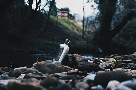 Message In A Bottle, message, river, note, bottle, nature