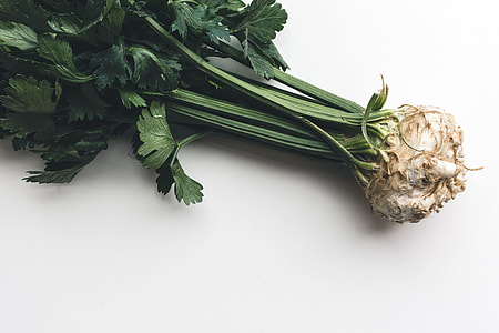 Wonderful healthy celery
