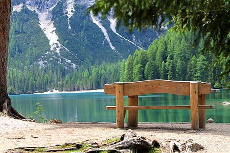 brown wooden bench surrounded by body of water