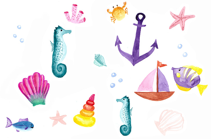 water color paintings of sea creatures