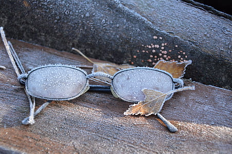 gray eyeglasses