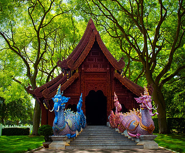 two blue and pink dragon decor photo