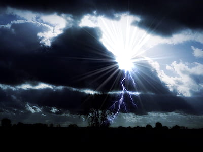 silhouette photography of tree with lightning strike under cumulus clouds