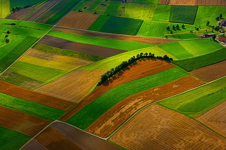 bird's eye view photography of brown and green grass fields