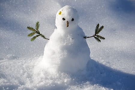snowman photography