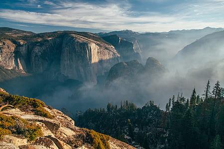 mountain, cliff, rock, tree, woodland