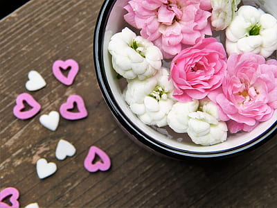 bowl of white and pink petaled flowers