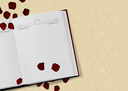 white ruled book with red flower petals