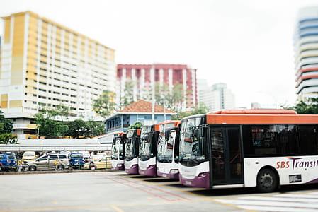 tilt shift lens photography of white and orange buses