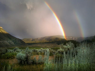 rainbow over forest and mountain